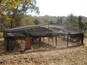 Viveiro com estrutura parecida com a anteior (sombrite de 30% e bambu)