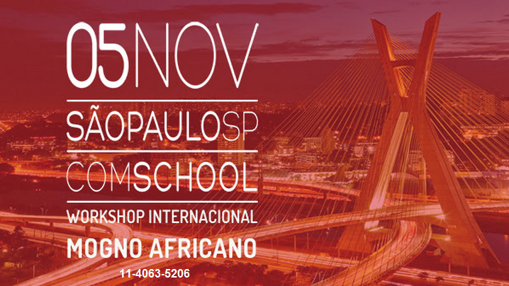 WorkShop - Mogno Africano
